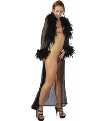 Negligee With Feathers