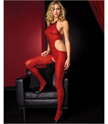 Halter Neck Zebra Print Bodystocking